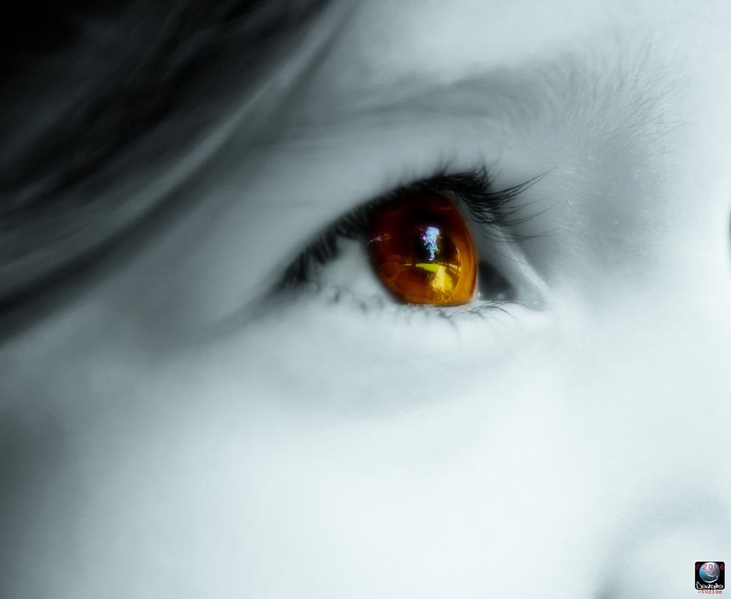 Eyes-Photo