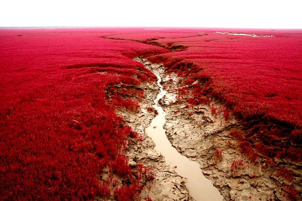 Beach_Red