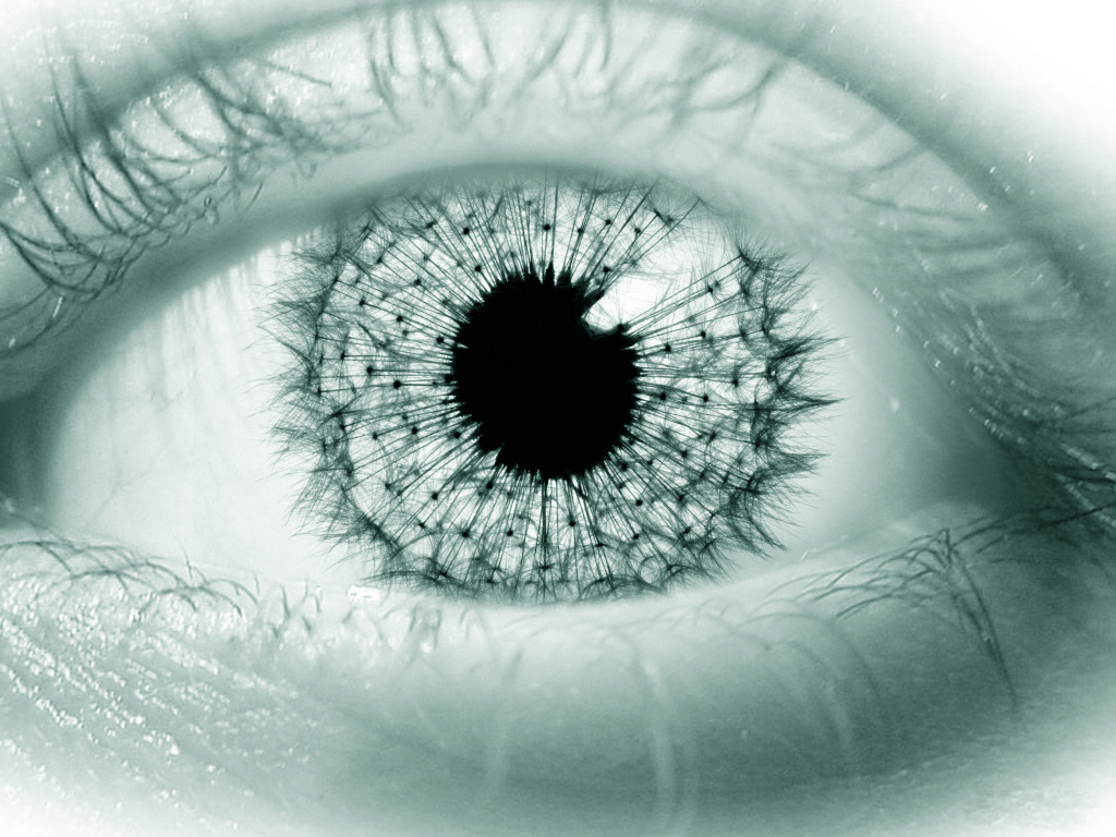Eye wallpaper7 Eyes Photos