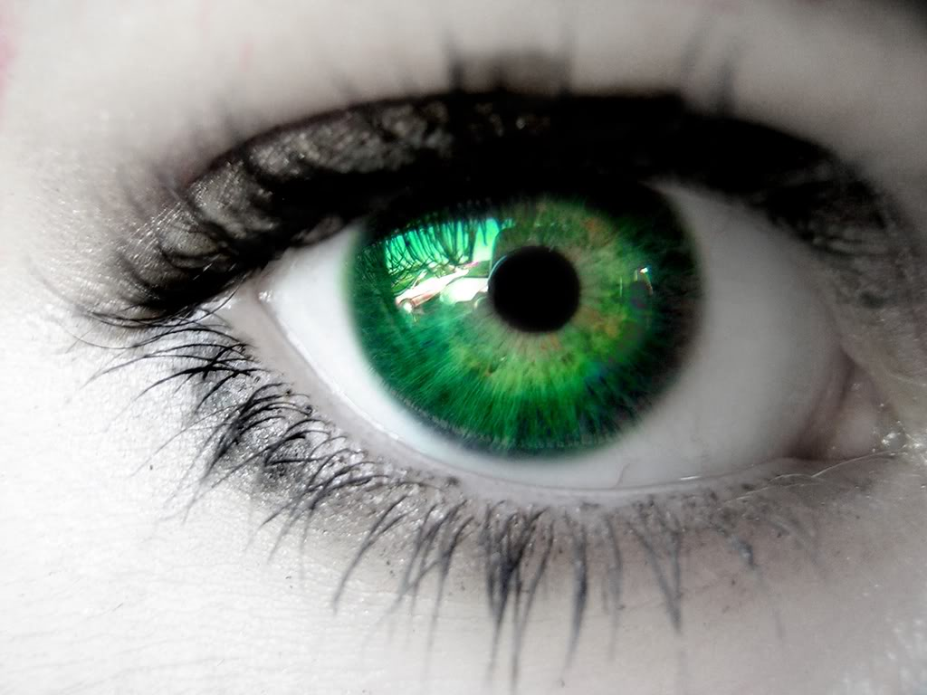 Green Eyes by catsastrofic Eyes Photos