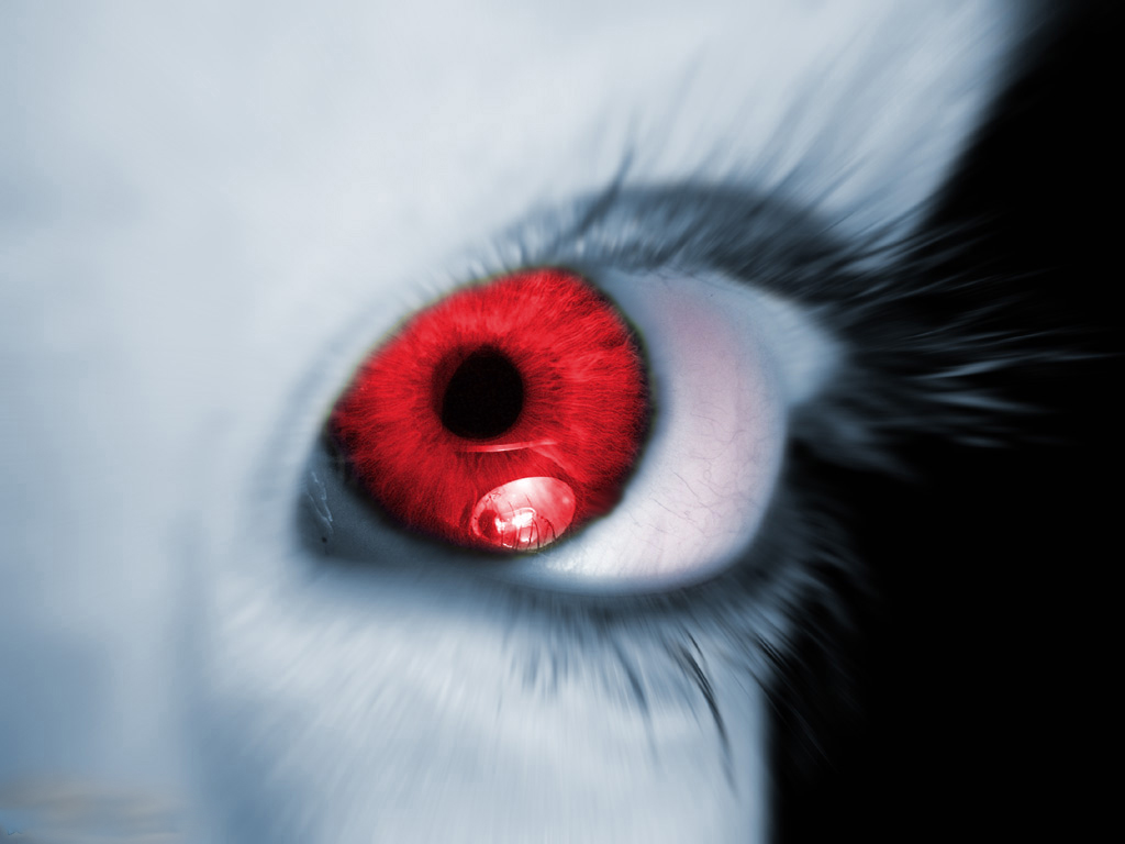red eyes desktop 1024x768 wallpaper 86081 Eyes Photos