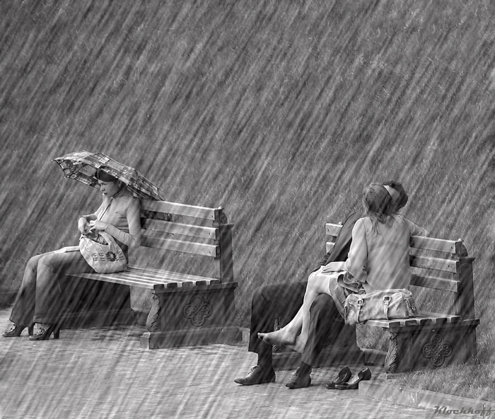 Rain Lovers Images Rain Lovers 